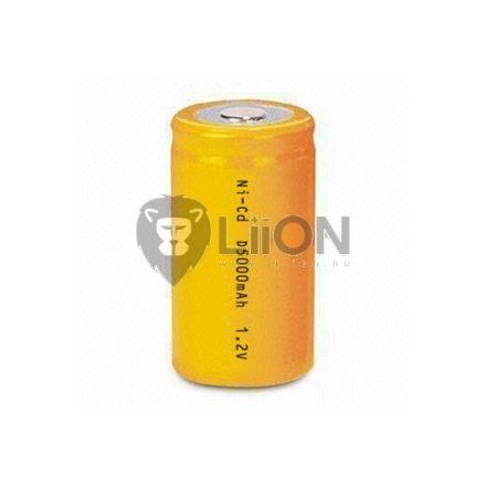 LION D5000H akku ni-cd