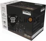 ECL-120-WW Entac Karácsonyi 120 LED Füzér WW 9m